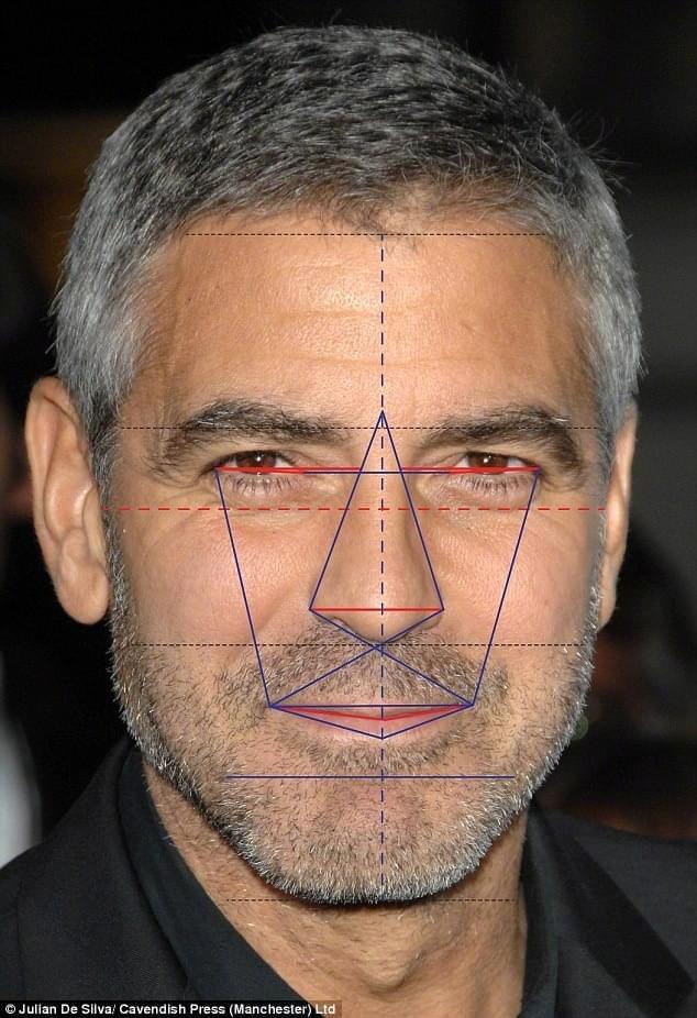 科学验证下的美男排名出炉 乔治克鲁尼成最帅男星