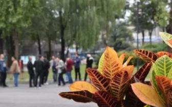 春节福利如何发?河南省总工会出台新规