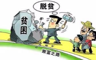 """融合""""三位一体"""" 平果县供销社新模式助贫困村增收"""