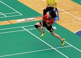 中国大学生羽毛球锦标赛于8月在内