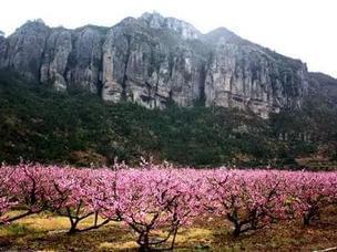这个春天 去台州这八个村落邂逅最美村色