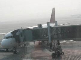 流亭机场上空飘风筝 造成部分航班延误