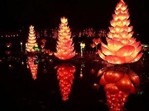除了惠州西湖 春节期间大亚湾可赏花灯啦!