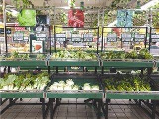 持续雨雪 荆州蔬菜遭了秧......