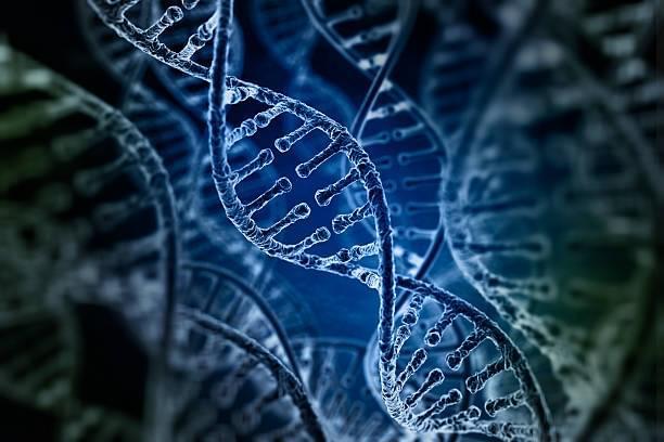 院士:人类遗传密码97%待解读 创新机会太多