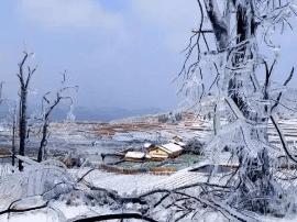 南国也有冰雪童话!这座小城私藏了广东罕见的雪景