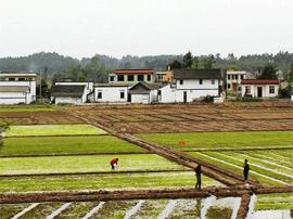 2018年将探索农村承包地确权应用 助力乡村振兴战略