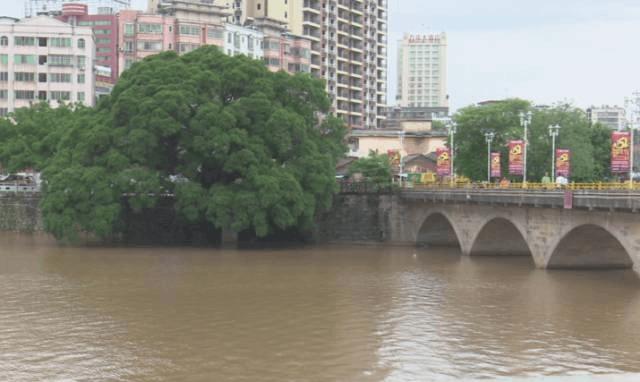 投资1.4亿 河南桥将打造成为多功能文化景观廊桥