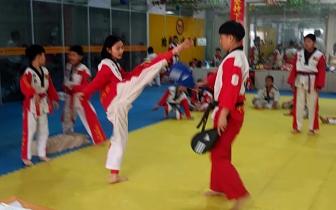 2018石家庄市首届千人跆拳道晋级大会圆满成