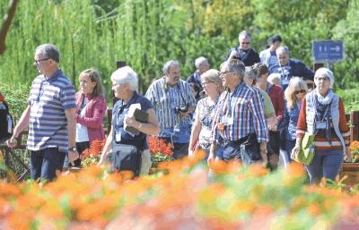 图文:荆州兴建城市生态公园 外国游客纷至沓来