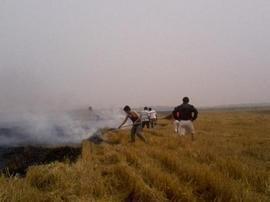 吉林省提前部署2017年秋季秸秆禁烧工作