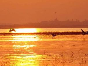 盘点全国10大最适合游玩的湿地公园 周末不愁去哪了