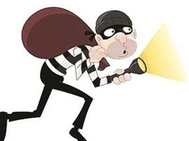 天网恢恢 疏而不露 咸宁巡警夜间巡逻抓获偷车贼