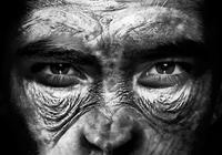 培育人猿混合体 让猪长人类肝脏:你能接受哪一种