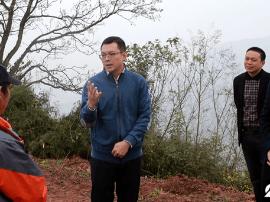 云阳县长覃昌德:把握关键核心 强力推进乡村振兴