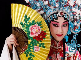 中央戏剧学院偶剧系首次招生 计划25人