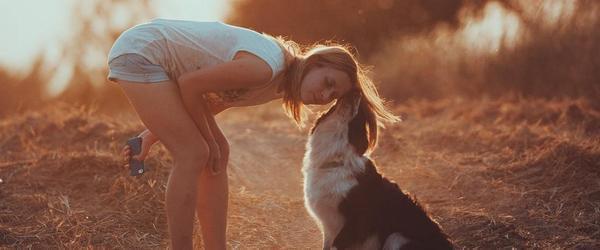 把狗当人训练,你却变得禽兽不如
