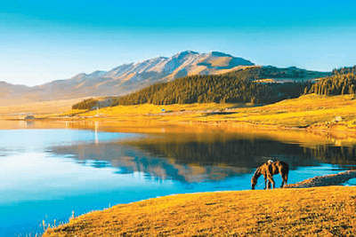 新疆:天山南北迎来最美季节