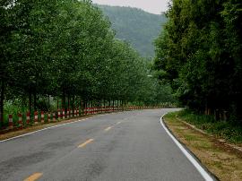 """灵宝市农村公路管理所:建设""""四好农村路"""""""