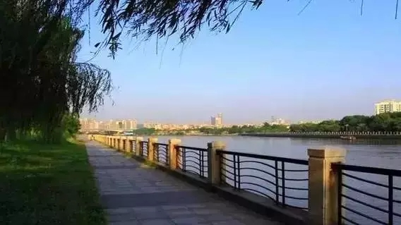 惠州这个地方要新建一条绿道!沿途都是最美的风景