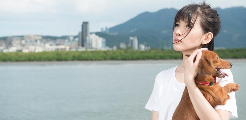 郭美美《一百种孤独的理由》MV品味孤独生活
