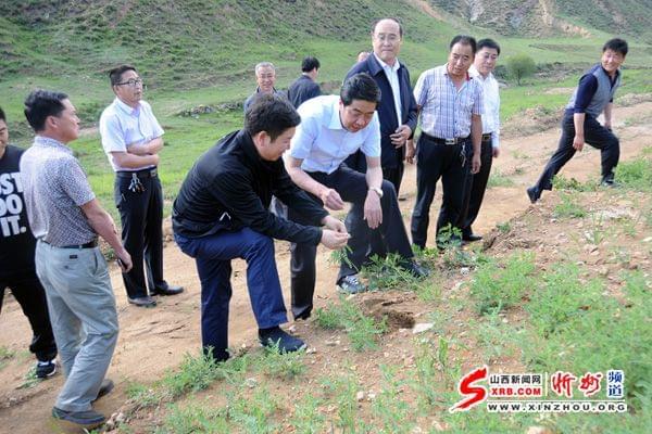繁峙县中药材种植增强农民脱贫能力