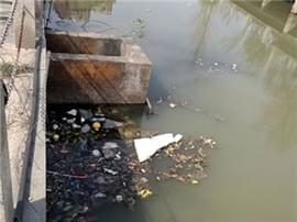红角洲一小区水渠成死水 城环局:上游排污所