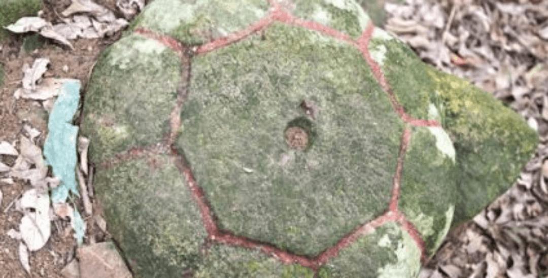 九日山发现圆弧形石盖 疑似高僧舍利塔构件