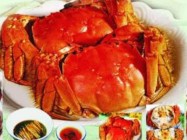 2017年阳澄湖大闸蟹个头变大
