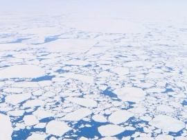 二氧化碳曾导致末次冰期地球气温陡升
