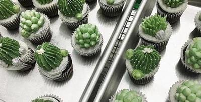 """烘焙师手巧制作百变""""沙漠植物蛋糕"""""""