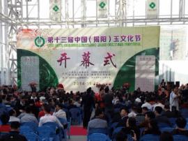 [镛匯·阳美玉都广场]第十六届玉文化节即将举办!