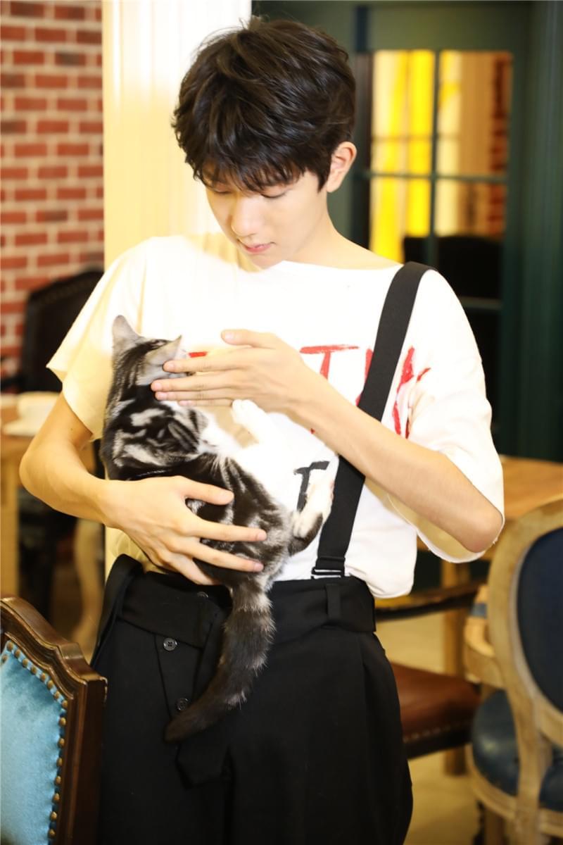 王源南锣鼓巷撸猫 粉丝:好想做他怀里的那只猫