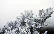 广东连山降春雪现奇特冰桂