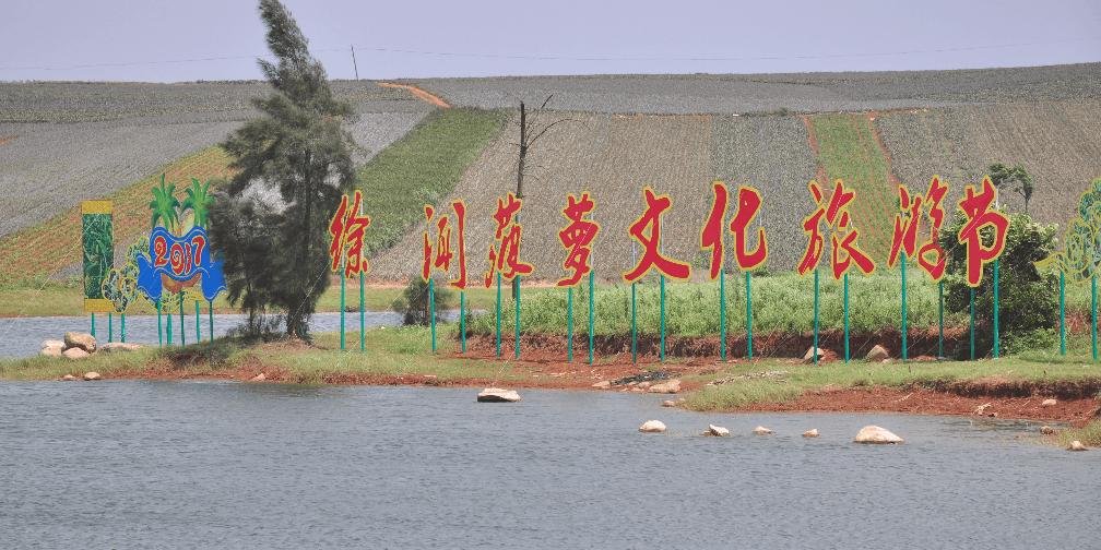 徐闻县隆重举行2017第二届菠萝文化旅游节