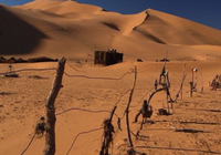 新研究称撒哈拉沙漠面积近百年扩大约16%