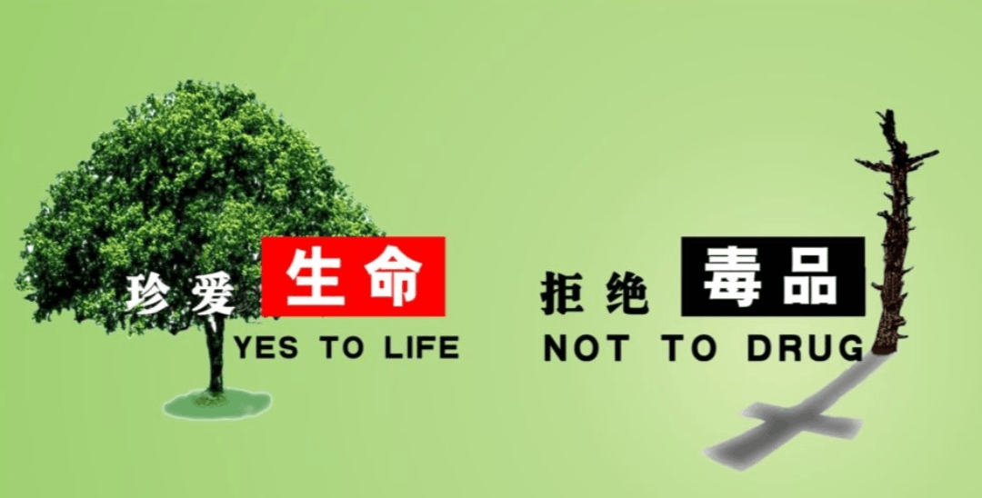 国际禁毒日来临 武汉市禁毒委提醒:远离毒品