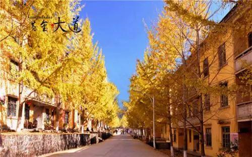 广东这15个地方被国家点名,韶关榜上有名!
