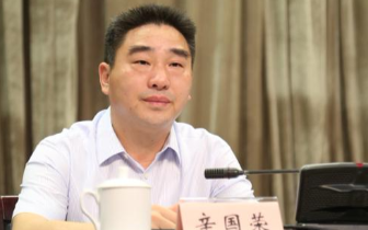 巴南书记辛国荣:推动全面从严治党向纵深发展