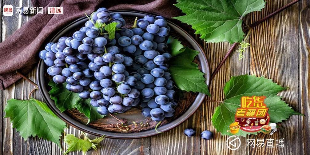 葡萄成熟时,Eason也为它高歌