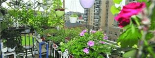 文昌花园住户在家中栽种花草向楼下洒水不合理