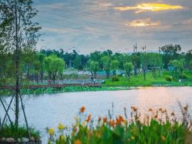 绿荫湖畔 漳州西院湖生态园正式开园迎客