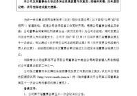 刘淑青将出任乐视网新任总经理