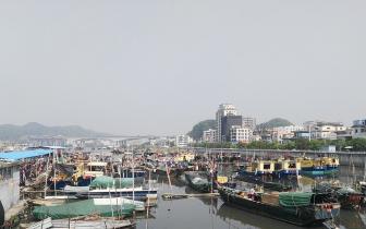 珠江禁渔期到了,东莞的渔民们在干什么?戳这里...