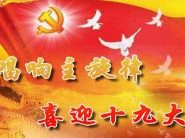 重庆安排部署党的十九大精神理论研究和宣传阐释工作