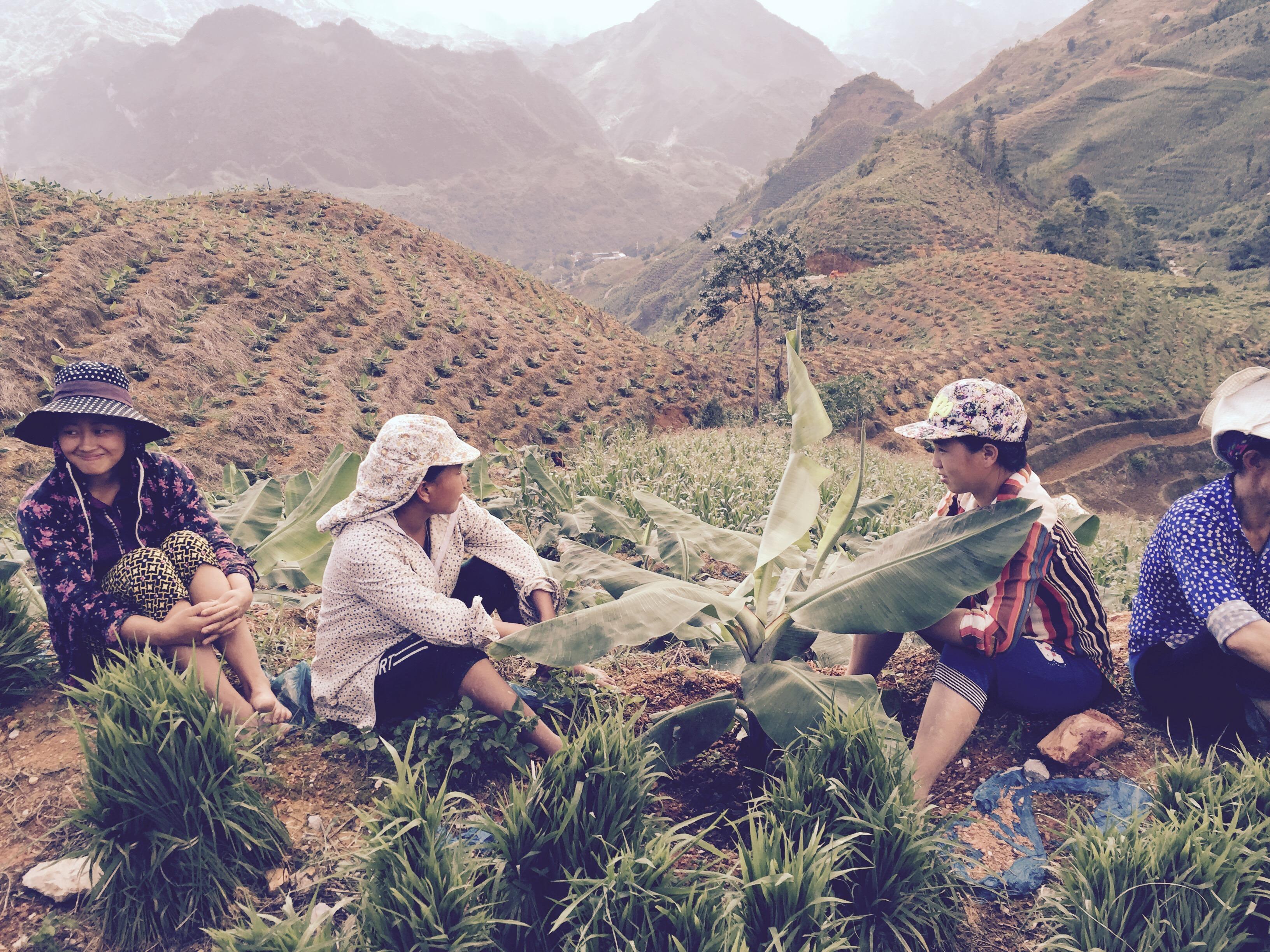 一些越南妇女也会来村子里做帮工  作者供图