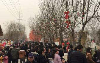粮画小镇春节游客爆棚 志愿服务紧抓不松
