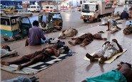 巴基斯坦民众街头避暑