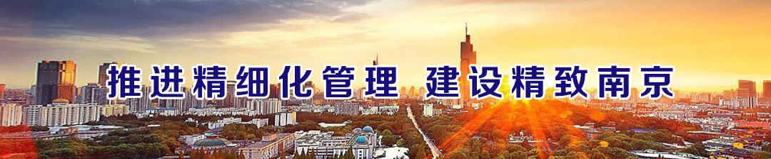 推进精细化管理 建设精致南京
