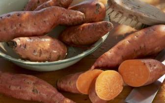 红薯便宜好吃 可惜2种人一口都不能碰